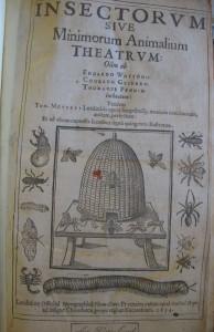 moufet-couv-1634-w