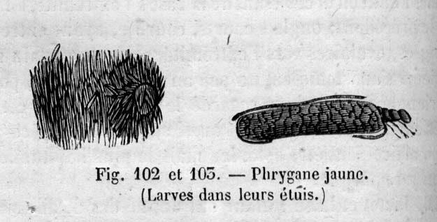 chenu-1859