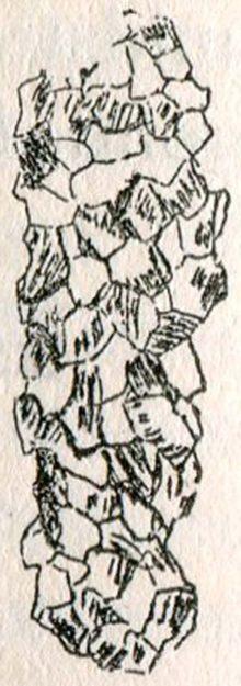 talmagne-1891-1