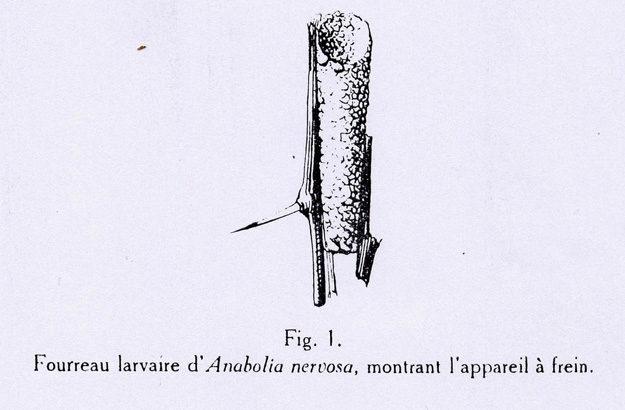 lestage-1925