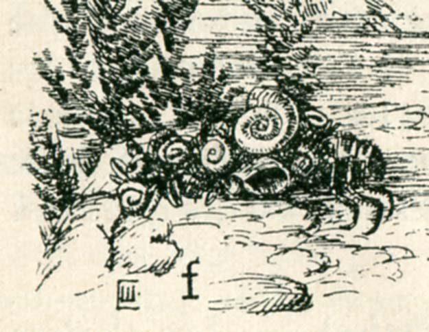 anonyme-animaux-plantes-1926-1
