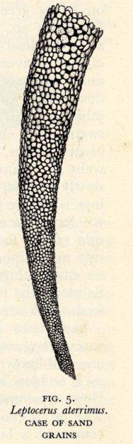 Hickin 1952-8