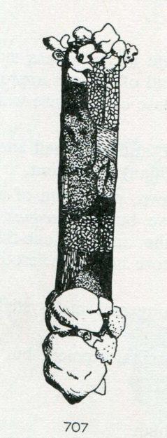 hickin-1967-31