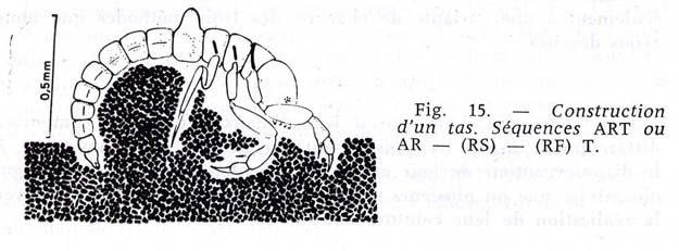 denis-1968-4