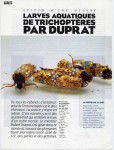 Inigo de Satrüstegui, « Larves aquatiques de Trichoptères par Duprat »-1