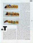 Inigo de Satrüstegui, « Larves aquatiques de Trichoptères par Duprat »-2