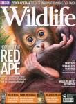 Wildlife, vol. 29, n°8, août 2011