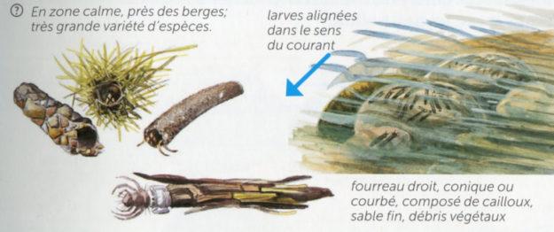 adriaens-2013-2