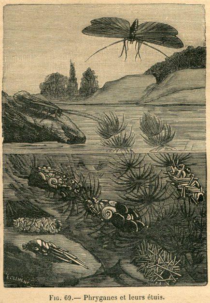 blanchon-1903-1913