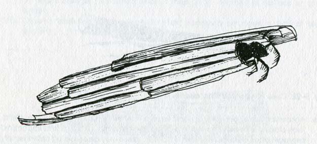 borger-1980-10