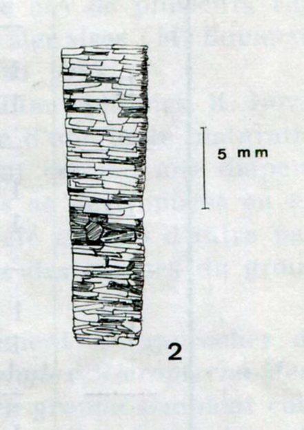 decamp-magne-1966