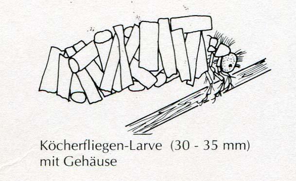 dreyer-1992-2
