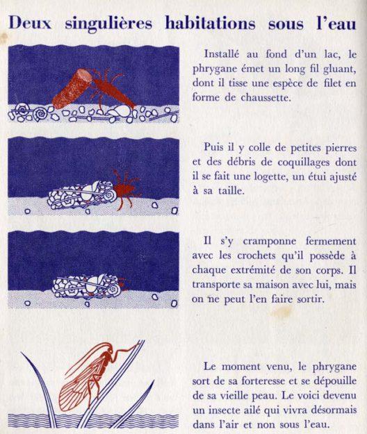 neurat-1957