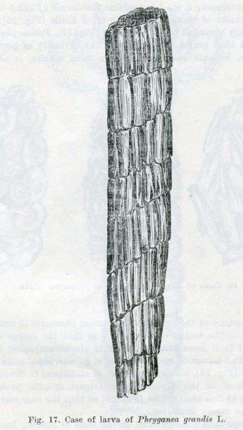 tomaszewski-1973-2